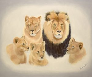 """Lion Pride, 20"""" x 30"""", oil and acrylic"""